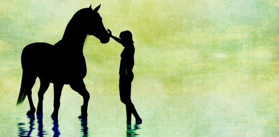 horse-silhouette-1462816645SwG